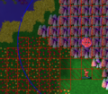 Checkerboardfarming2.png