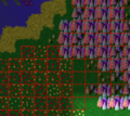 Checkerboardfarming1.png
